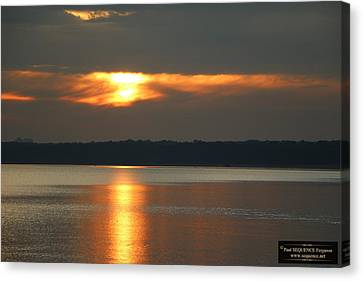 Canvas Print - Morning Beauty 3 by Paul SEQUENCE Ferguson             sequence dot net