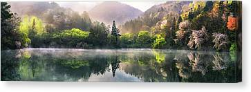 Misty Canvas Print - Morning Calm by Tiger Seo