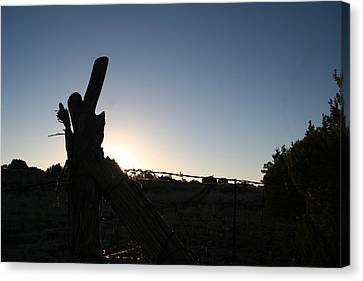 Canvas Print featuring the pyrography Morning by David S Reynolds