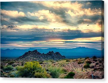 Morning Desert Glow Canvas Print by Fred Larson