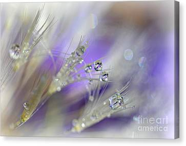 Morning Dew Canvas Print by Lila Fisher-Wenzel
