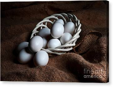 Morning Eggs Canvas Print by Cecil Fuselier