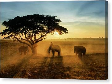 Thailand Canvas Print - Morning Elephant Home Town by Saravut  Whanset