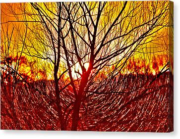 Morning Fire Canvas Print by Lorri Crossno