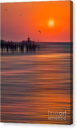 Morning Flight - A Tranquil Moments Landscape Canvas Print