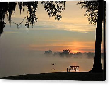 Morning Flight Canvas Print