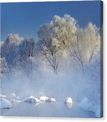 Morning Fog And Rime In Kuerbin Canvas Print