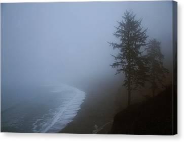 Morning Fog At Agate Beach Canvas Print by Robert Woodward