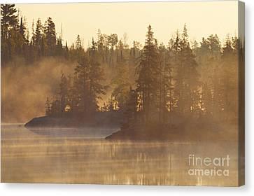 Morning Fog Canvas Print by Larry Ricker