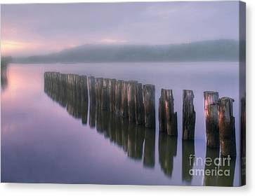 Morning Fog Canvas Print by Veikko Suikkanen