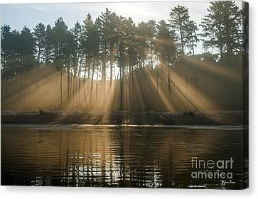 Morning Fog With Sunbeams Canvas Print by Yefim Bam