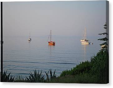 Canvas Print featuring the photograph Morning by George Katechis