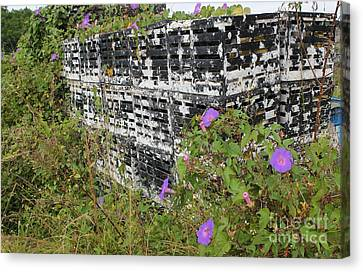 Morning Glories And Crab Traps Canvas Print by Theresa Willingham
