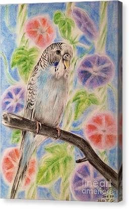 Morning Glory And Parakeet Canvas Print