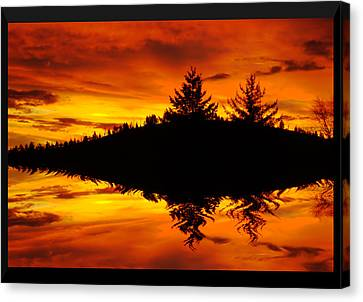 Morning Glory Canvas Print by Kevin Bone