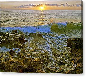 Canvas Print featuring the photograph Morning Glory by Larry Nieland