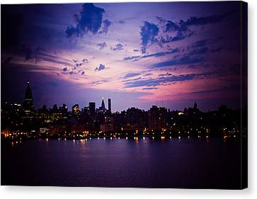 Morning Glory Canvas Print by Sara Frank