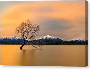 Morning Glow Of The Lake Wanaka
