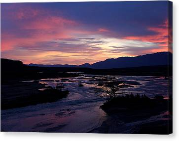 Canvas Print featuring the photograph Morning Glow by Tammy Espino
