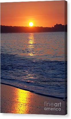 Morning Gold Canvas Print by Dan Holm