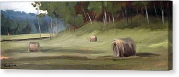 Morning Hay Canvas Print by Erin Rickelton