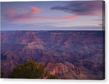 Morning Hike Into The Grand Canyon Canvas Print by Andrew Soundarajan