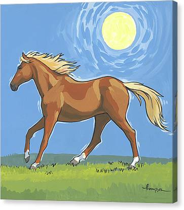 Morning Horse Square Version Canvas Print by Tracie Thompson