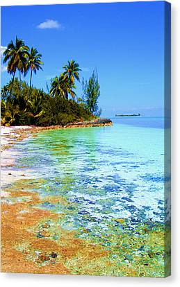 Morning In Andros  Canvas Print by Victor Minca