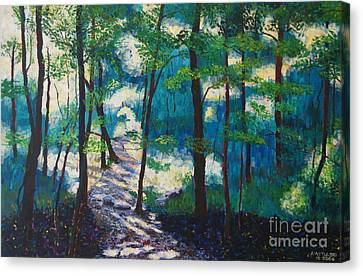 Morning Sunshine In Park Forest Canvas Print by Arthur Witulski