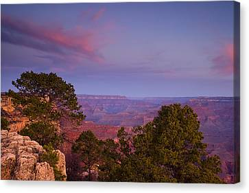 Morning In The Canyon Canvas Print