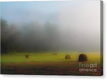 Morning In The Cove Canvas Print