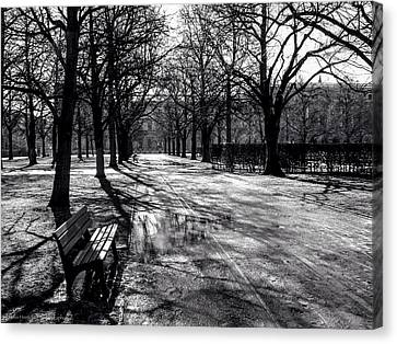 Canvas Print featuring the photograph Morning In The Hofgarten by Ross Henton