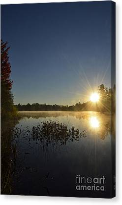 Morning In The North Woods Canvas Print