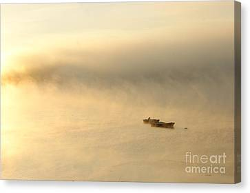 Canvas Print featuring the photograph Morning Light by Christopher Mace