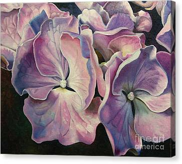 Morning Light Canvas Print by Joyce Hutchinson