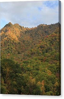 Morning Light On Chimney Tops Smoky Mtns Canvas Print