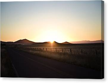 Morning Light Canvas Print by Swift Family