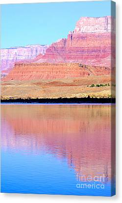 Morning Light - Vermillion Cliffs And Colorado River Canvas Print by Douglas Taylor