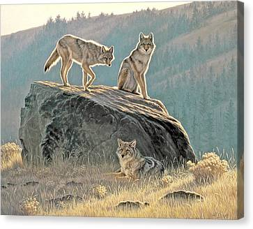 Morning Lookouts Canvas Print by Paul Krapf
