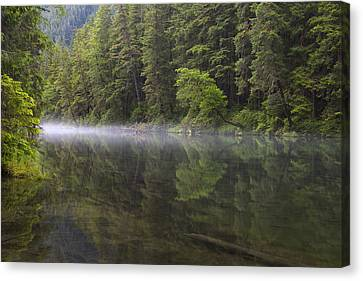 Morning Mist At Redoubt Canvas Print by Tim Grams