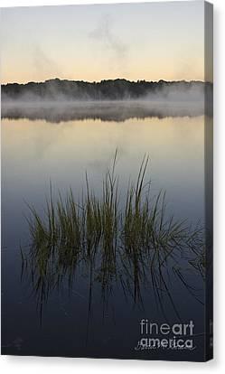 Morning Mist At Sunrise Canvas Print by David Gordon
