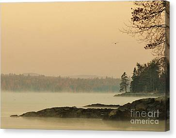 Morning Mist Canvas Print by Christopher Mace