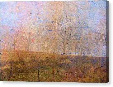 Morning Mist Canvas Print by Jan Amiss Photography