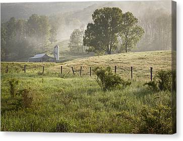 Morning Mist Canvas Print by Mike Lang