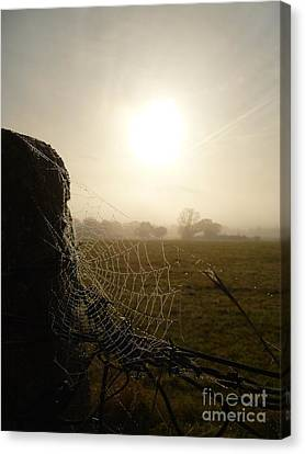 Canvas Print featuring the photograph Morning Mist by Vicki Spindler