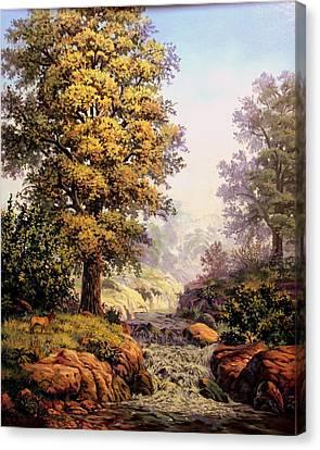 Morning Mist Canvas Print by W  Scott Fenton