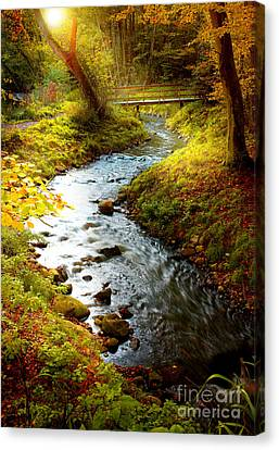 Canvas Print featuring the photograph Morning Nature by Boon Mee