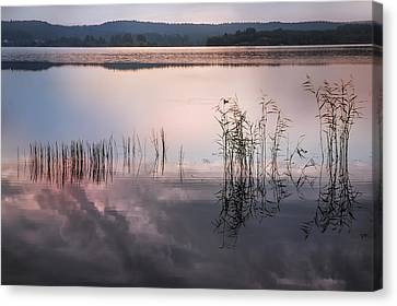 Morning Nocturne. Ladoga Lake. Northern Russia  Canvas Print by Jenny Rainbow