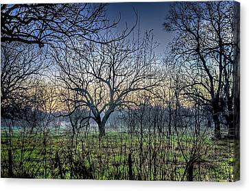 Barbed Wire Fences Canvas Print - Morning Of The Hunt by David Morefield