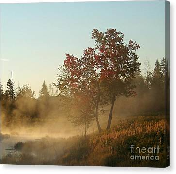 Morning On Middle River Canvas Print by Christopher Mace